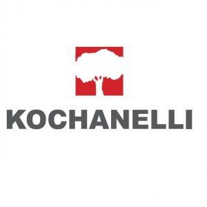 Художественный паркет Kochanelli